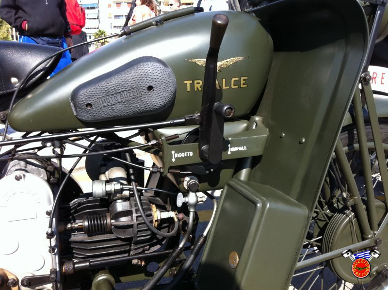 06 Trialce